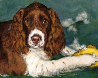 English Springer Spaniel Dog Art Print by Dottie Dracos, Liver Springer Spaniel with Toy