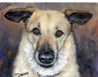 "Chinook Dog Art Print of Original Painting by Dottie Dracos ""Helicoptor-Ears Chinook"""