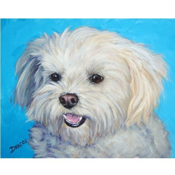 maltese painting maltese art print of original acrylic dog painting by dottie 4667