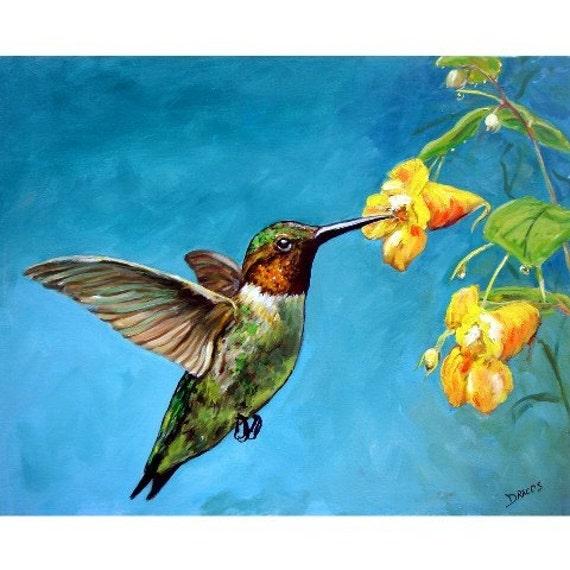 Hummingbird Bird Art Print of Original Painting by by ...