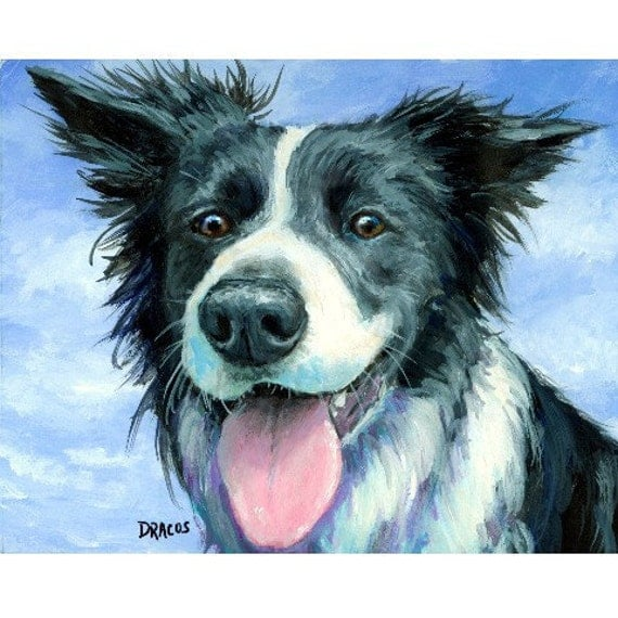 "Border Collie Dog Art Print of Original Painting by Dottie Dracos ""Border Collie in Wind"""