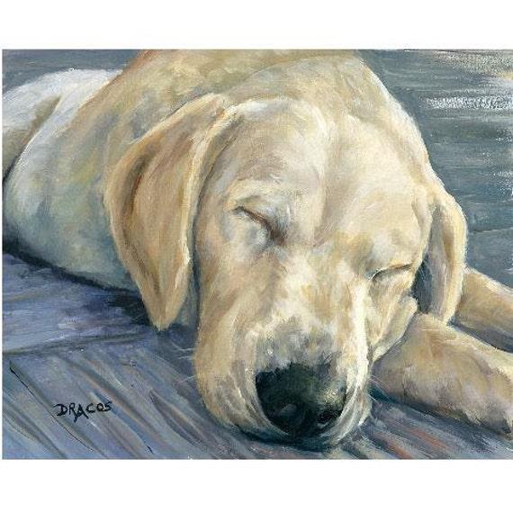 yellow lab puppy sleeping - photo #41