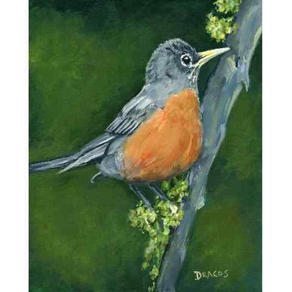 Robin Bird Art Original Acrylic Painting, 8x10