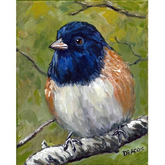 Daily Paintings By Elizabeth Blaylock, American ...  |Bird Painting Acrylic