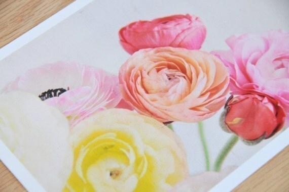 The Ranunculus Gathering - 5x7 photographic print