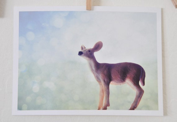 You're Dazzling My Deer - 5x7 photographic print