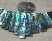 BEAUTEOUS Abalone Shell Tab 13 Piece Necklace Bead Set