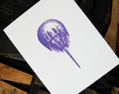 Set of Six Horseshoe Crab Note Cards - Gocco Printed