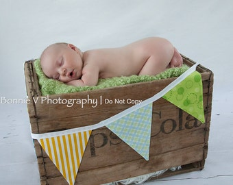 7 Flags, Boy Fabric Bunting Banner, Photo Prop. Designer's Choice Boy Themed Flag Banner, Yellow, Green, Blue.