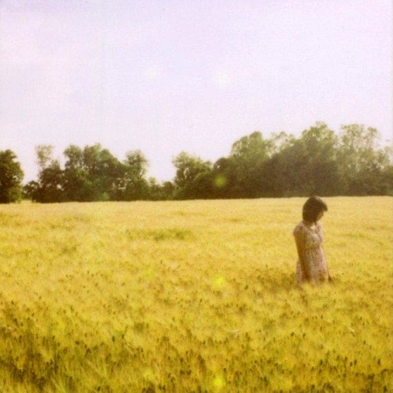 CLEARANCE Fields of Gold - Fine Art Limited Edition Polaroid Giclee Print - Natural Art, Romantic