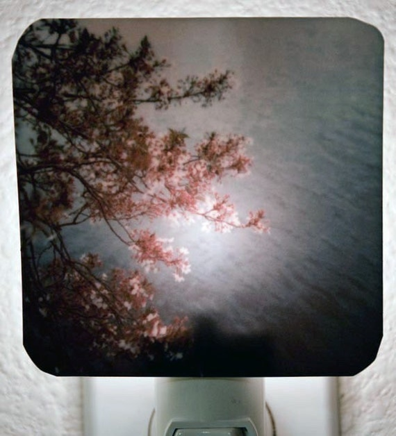 Clearance DISCONTINUED Polaroid Photo Night Light - Cherry Blossoms - Unique Housewarming Gift, Whimsical Home Nursery Decor