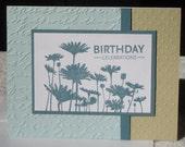 Daisy Birthday Celebrations - Blank Birthday Card