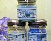 Pick any TWELVE Handmade Soy Candles Black Mountain Candles 8 ounces
