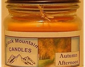 AUTUMN AFTERNOON 8 ounce Handmade soy Candle Black Mountain Candles