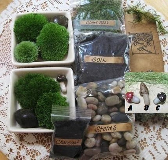 DIY Terrarium Kit    Build Your Own Terrarium,  Green Moss,Stones,Soil,Charcoal, Handmade Mushroom and Handstamped Tag