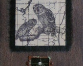 reserved-- Owl - mixed media collage painting