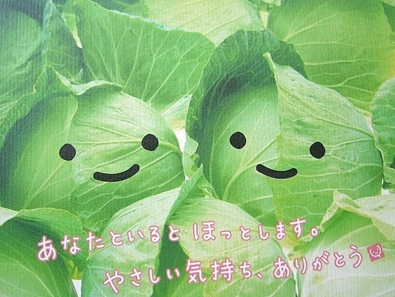 Cute Japanese Postcard Smiling Cabbage By Fromjapanwithlove