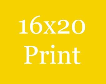 16x20  Print