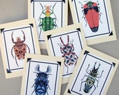 Shibori Beetle Cards- Blank Set of 6