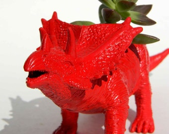 Triceratop Dinosaur Planter Red with Succulent Plant Great Dorm, Office Decor