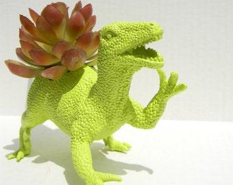 Raptor Dinosaur Planter Gift Ready to Plant Teacher Gift Dorm Decor