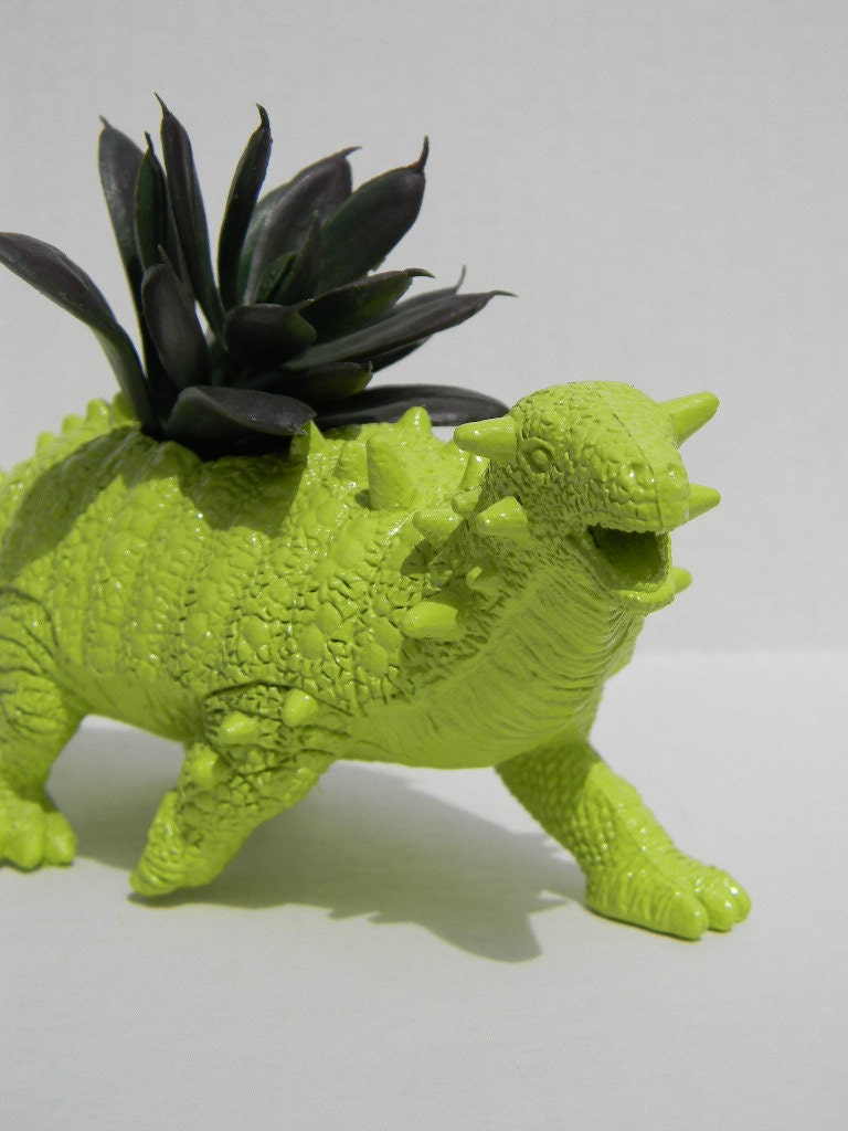 Dinosaur Planter Great Dorm Office Home Decor Gift By