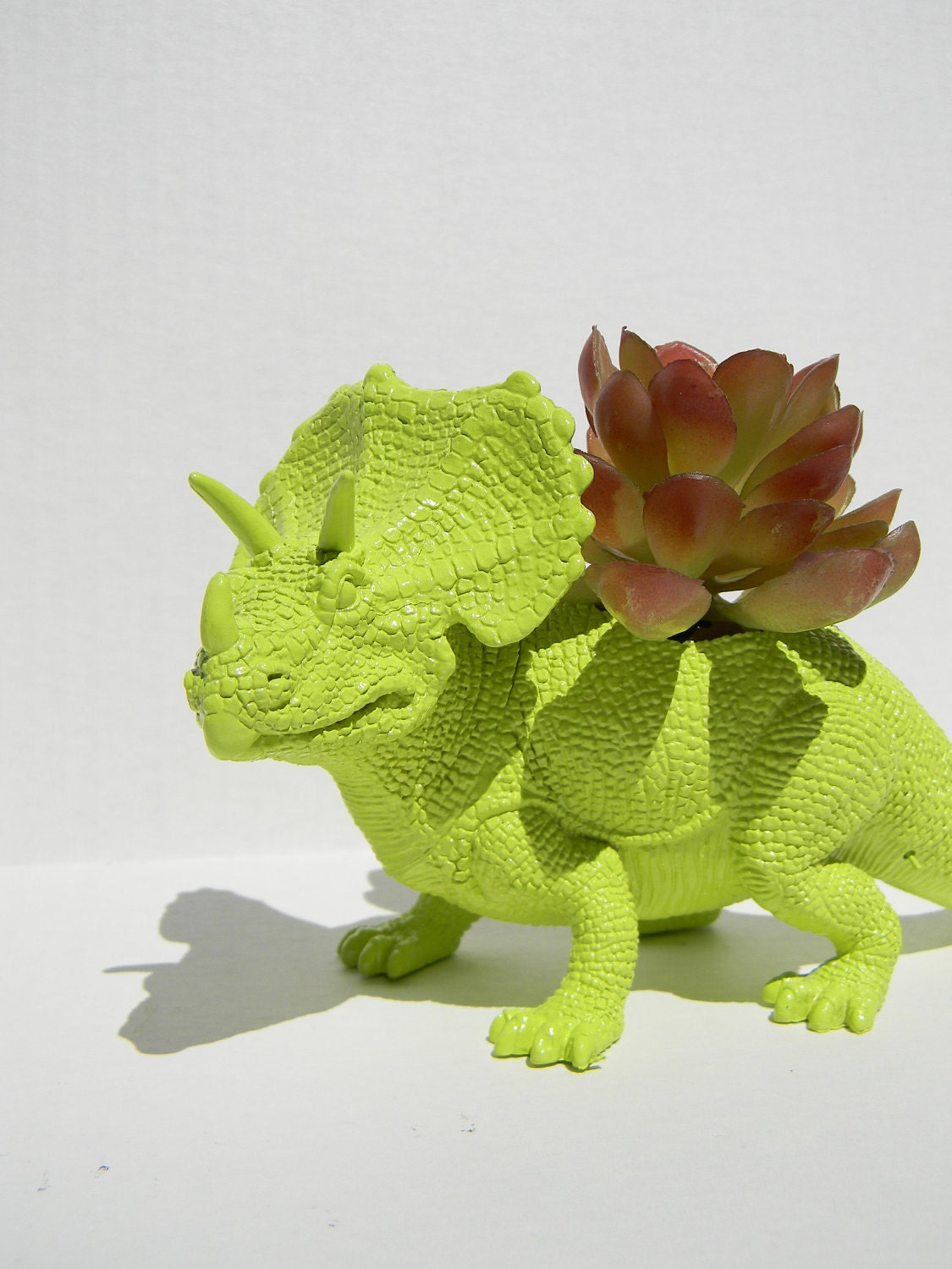 Limited Triceratop Dinosaur Planter Green For By Crazycouture