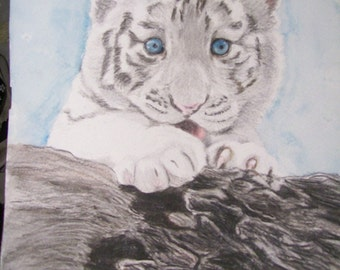 White Tiger Cub Wildlife Portraits Watercolors 9 x 12 inch U Provide Picture or Idea by Pigatopia