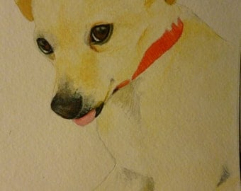 Chihuahua Chauwawa Memorial Watercolor Portrait U Provide The Picture or Idea Made to Order 9 x 12 inch by Pigatopia