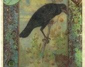 Box set of six- Crow card