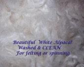 White Alpaca fleece