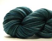 Spruce Superwash DK Wool Hand Dyed Yarn
