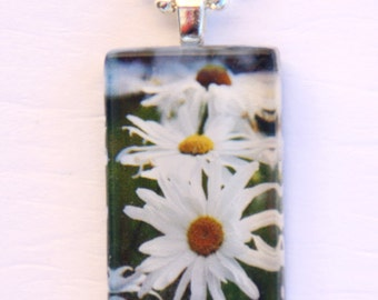 Glass Tile Photo Pendant - Daisies -  Garden - White - Green - summer - Jewelry - Necklace - Original Photography - Gift