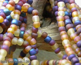 Harvest Glory Seed Bead Mix  6/0 Czech Glass   4mm