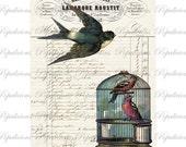 Vintage Style Paris Bird Paris collage Digital Download for Tea Towels, Papercraft, Transfer, Pillows and more