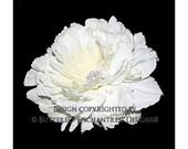 Rhinestone Ivory Avalon Peony Bridal Hair Flower Clip