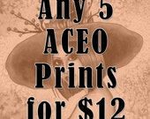Fantasy ACEO Prints - Witch Art - Mermaid Art - Fairy Art - Any 5 Fantasy Art Nikki Burnette ACEO Prints