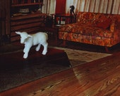 lamb, 8x10 photograph of miniature animal in surreal vintage 60s home