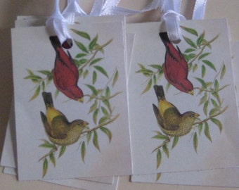 Birds Gift Tags
