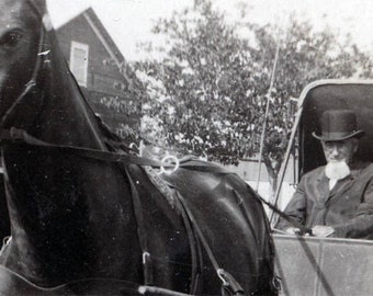 Ma and Pa  w AMish Beard Horse and Buggy 1915 vintage photo