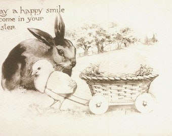 vintage photo Chick and Bunny Rabbit EAster postcard 1911