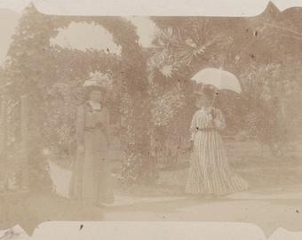 vintage photo Women in Garden with PArasol