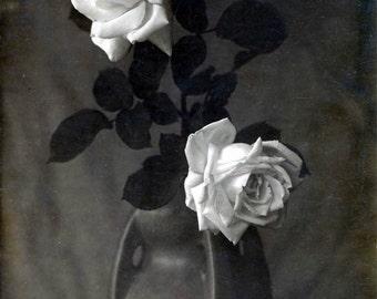 White Roses in Ceramic Vase Still life Black and White Vintage photo print