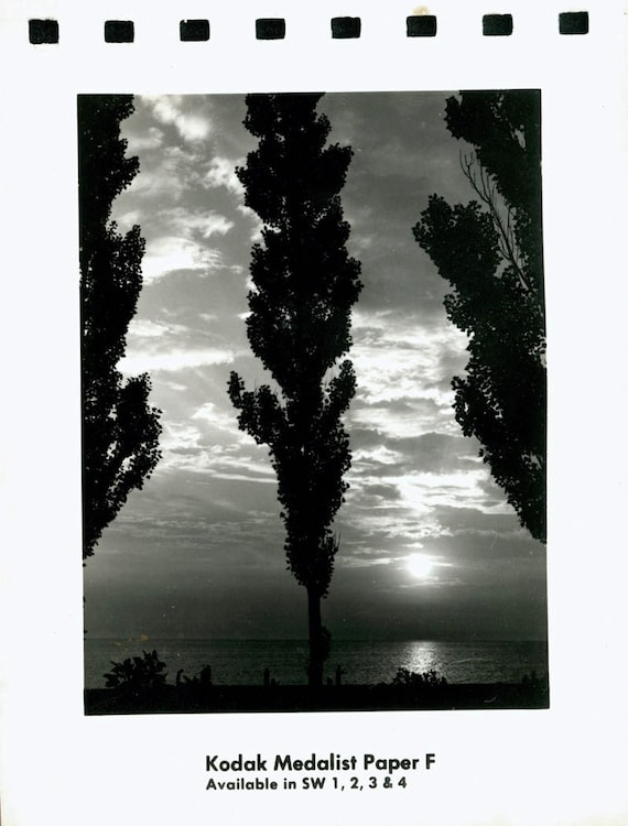 vintage photo Rare Kodak Photo Paper Sample