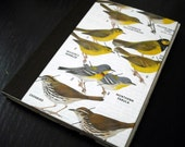 Illustrated Bird Journal - Yellow Warblers Nature Guide Notebook