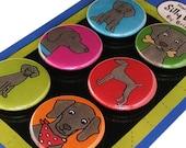 Weimaraner Silly Dog Magnet Set