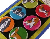 Basset Hound Magnets- Silly Dog Breed Magnets