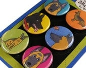 German Shepherd Magnet Set Silly Dog Magnets
