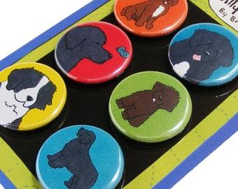 Newfoundland Silly Dog Magnet Set