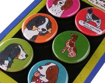 Springer Spaniel Silly Dog Magnet Set